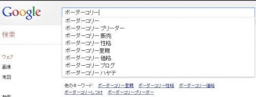 Google検索でボーダーコリーというキーワードで検索した画像。オートコンプリートが表示されている。