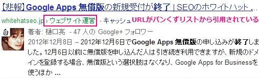 現在のGoogleのスニペット
