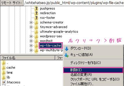 FilleZillaを使ってWP File Cacheのディレクトリを削除するやり方の解説画像